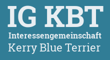 Interessengemeinschaft Kerry Blue Terrier