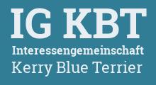 Interessengemeinschaft Kerry Blue Terrier